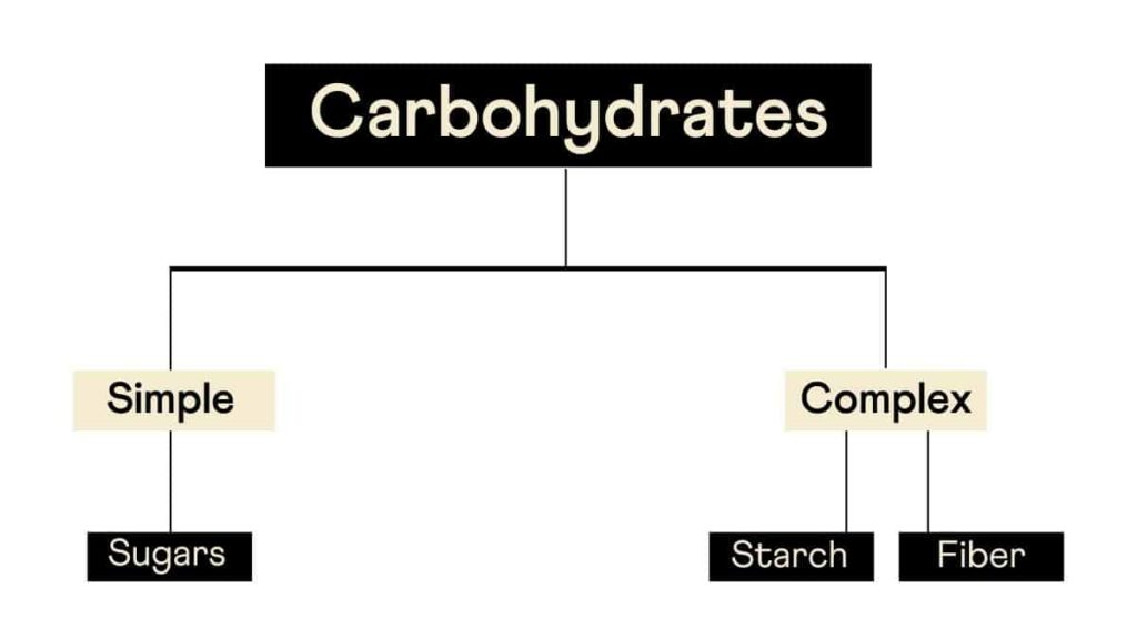 Analyze Your Genetic Variants For Weight Gain On Carbohydrate Intake